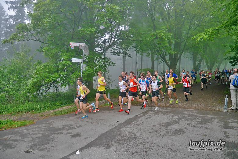 Hermannslauf - Start 2014 - 33