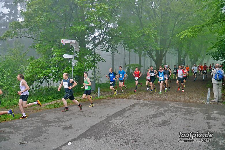 Hermannslauf - Start 2014 - 41