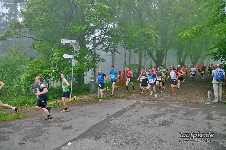 Hermannslauf - Start 2014 - 42