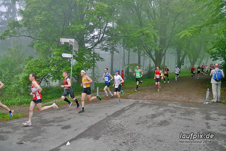 Hermannslauf - Start 2014 - 45