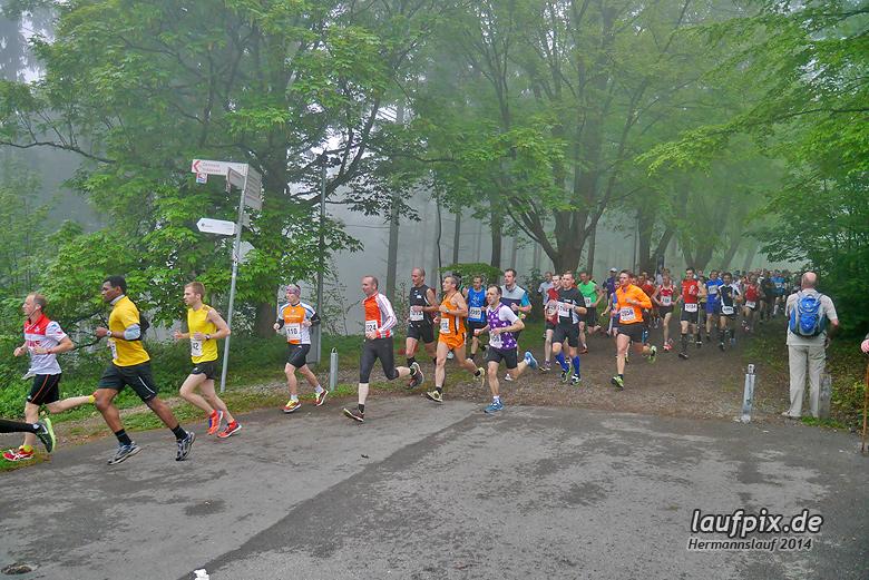 Hermannslauf - Start 2014 - 51