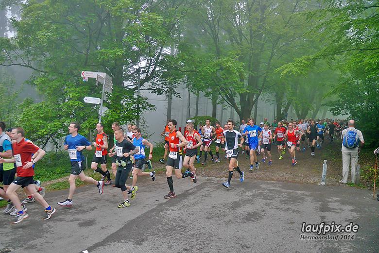 Hermannslauf - Start 2014 - 53