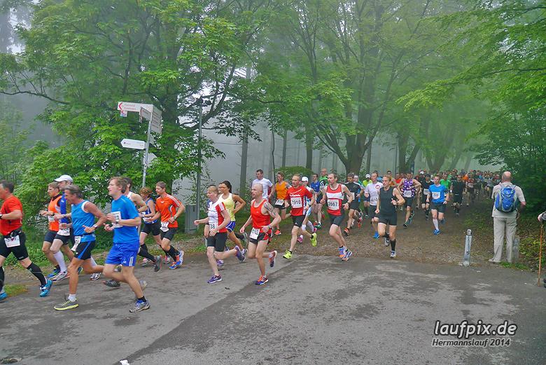 Hermannslauf - Start 2014 - 56