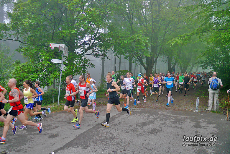 Hermannslauf - Start 2014 - 57