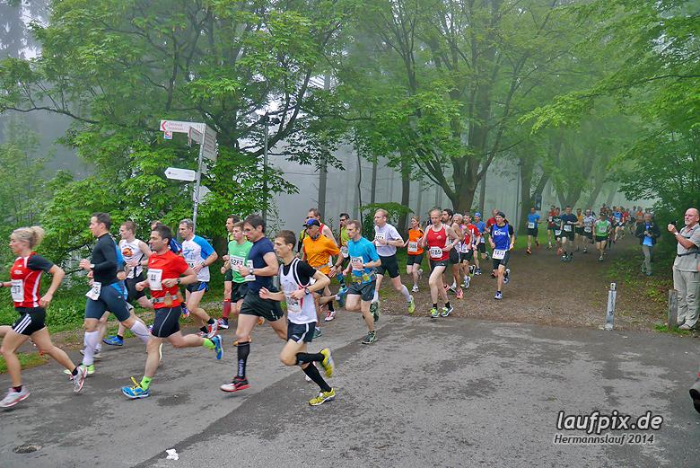 Hermannslauf - Start 2014 - 63