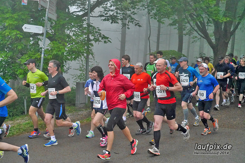 Hermannslauf - Start 2014 - 501