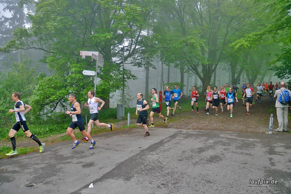 Hermannslauf - Start 2014 Foto (39)