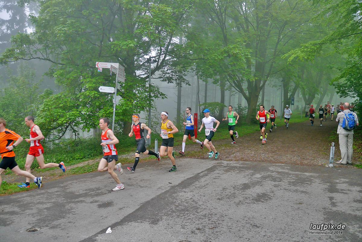 Hermannslauf - Start 2014 Foto (44)