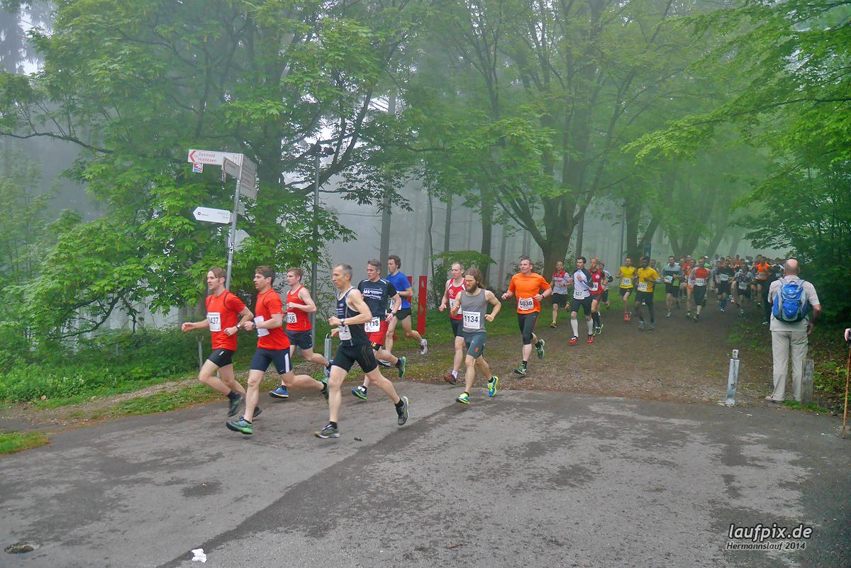 Hermannslauf - Start 2014 Foto (49)
