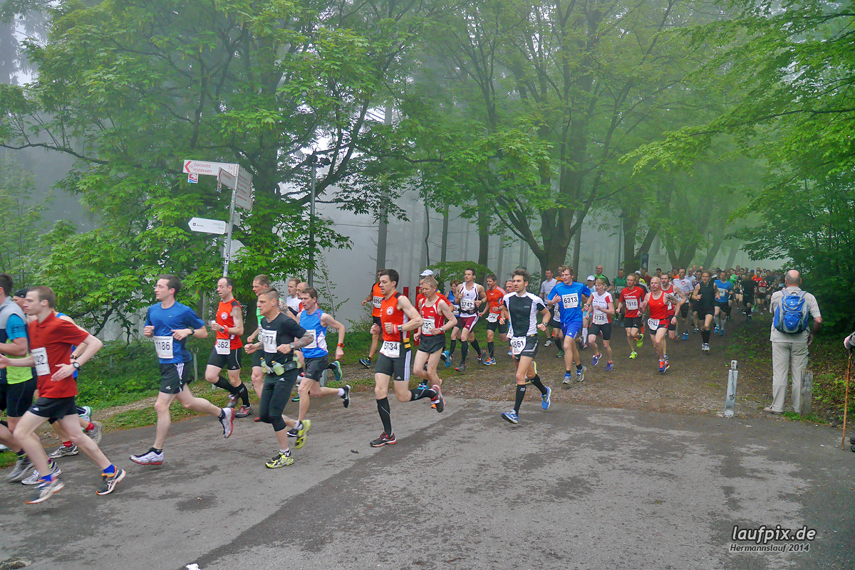 Hermannslauf - Start 2014 Foto (1)