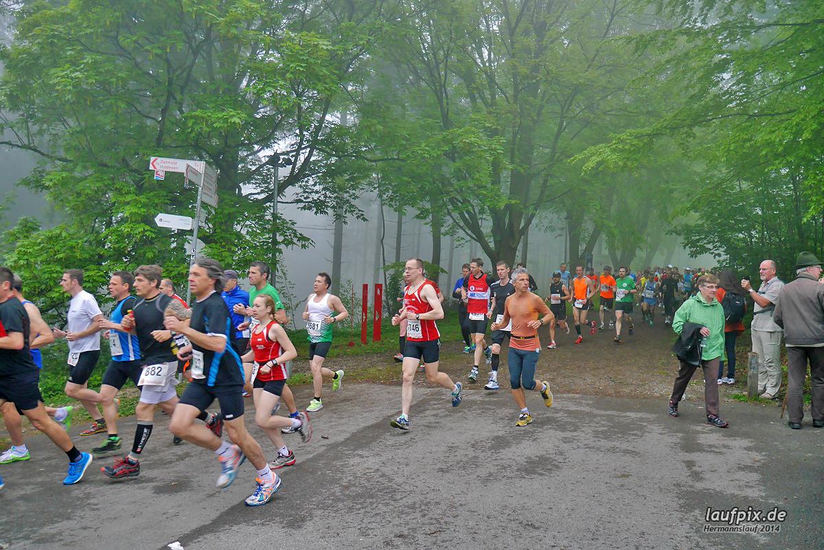 Hermannslauf - Start 2014 - 100