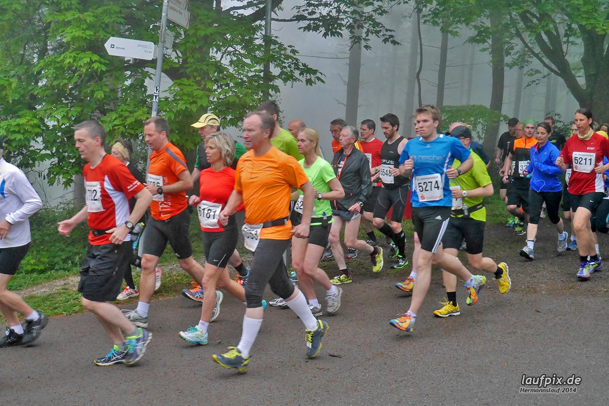Hermannslauf - Start 2014 Foto (619)