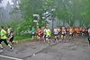 Hermannslauf - Start 2014 (90507)